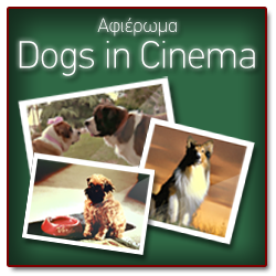 banner dog cinema1